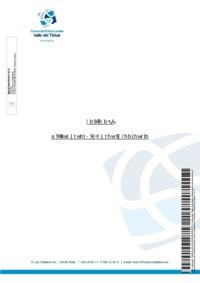 Anexo 07 - Mejoras propuestas por el Consorcio